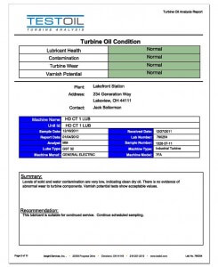 Annual Turbine Analysis Report